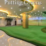 Picture of an amazing indoor home putting green